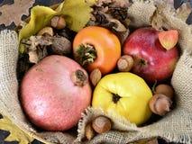 виноградины плодоовощей корзины осени яблок Стоковая Фотография