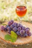 Виноградины с лист и бокал вина на деревянном пне в саде Стоковое Изображение RF