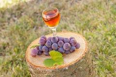 Виноградины с лист и бокал вина на деревянном пне в саде Стоковые Изображения RF