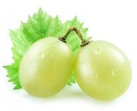 2 виноградины с малыми лист Стоковые Фотографии RF