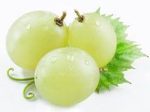 3 виноградины с малыми лист Стоковое Фото