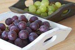 виноградины шара Стоковые Фотографии RF