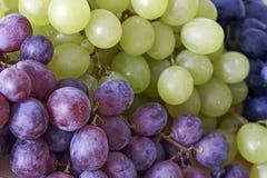 виноградины шара Стоковое Фото