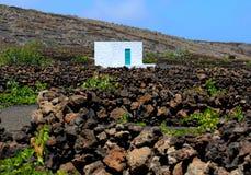 Виноградники в Ла Geria, Лансароте, Канарских островах, Испании Стоковое Фото