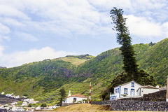 Виноградники на Азорских островах, Португалии Стоковое Фото