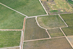 Виноградники от воздуха Стоковое фото RF