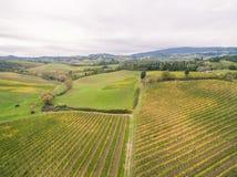Виноградники Тосканы стоковая фотография rf