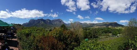 Виноградники Южная Африка Кейптауна Стоковое Изображение RF