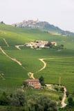 виноградники langhe заречья итальянские Стоковые Изображения RF