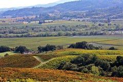 Виноградники Napa Valley Стоковые Изображения RF
