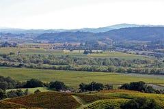 Виноградники Napa Valley Стоковое Изображение RF