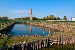 Виноградник Венеции Burano Mazorbo Стоковое Изображение