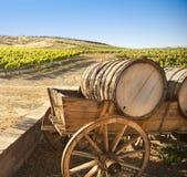 Виноградник виноградины с старой фурой экипажа бочонка Стоковая Фотография