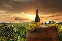 Виноградник в Chianti, Тоскане стоковые изображения