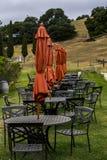 Виноградник готовый для гостей Стоковые Изображения RF