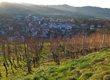Виноградник, заход солнца и взгляд на Gengenbach Стоковое Фото