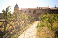 Виноградник на монастыре Alaverdi Стоковое Фото