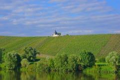 Виноградник с молельней Стоковое фото RF