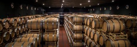 Винодельни Tasso al Guado в Bolgheri, Ливорно, Италии Стоковое фото RF
