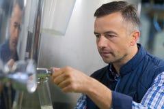 Винодел беря образец пива на винзаводе Стоковая Фотография RF
