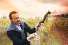 Виноторгоец проверяя лозу Стоковые Фото