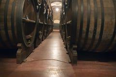 вино Аргентины Стоковая Фотография