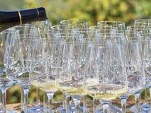 Вино бутылки лить в некоторые стекла со страной Langhe стоковая фотография rf