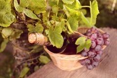 вино бутылки розовое Стоковая Фотография RF