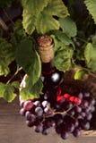 вино бутылки розовое Стоковое Изображение