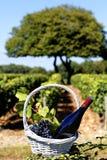 вино бутылки Стоковое Изображение