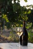 вино бутылки белое Стоковые Фотографии RF