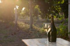 вино бутылки белое Стоковое Изображение RF