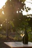 вино бутылки белое Стоковые Изображения RF