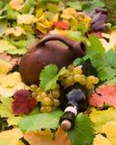 вино виноградины глиняного кувшина бутылки Стоковое фото RF
