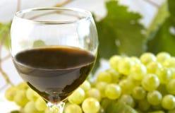 вино виноградины Стоковые Изображения RF