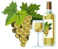 вино виноградин бутылочного стекла белое Стоковые Фотографии RF