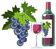 вино виноградин бутылочного стекла красное Стоковая Фотография RF