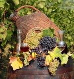 вино виноградника Стоковые Изображения RF