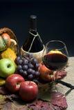 вино виноградин Стоковая Фотография