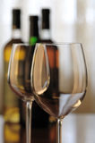 вино дегустации Стоковые Изображения RF