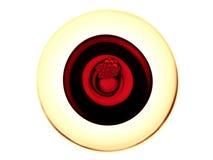 вино десерта Стоковое фото RF