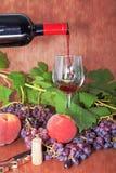 Вино для каждого случая Стоковые Фото