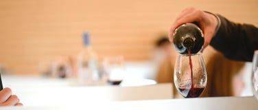 Вино дегустации в vinery Стоковое Фото