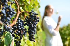 Вино дегустации женщины Стоковые Фотографии RF