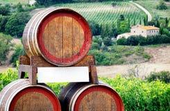 вино дегустации руки кубка Стоковая Фотография