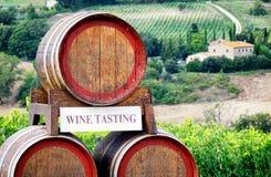 вино дегустации руки кубка Стоковое Фото