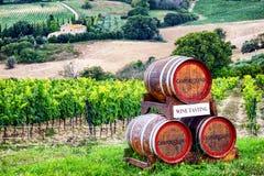 вино дегустации руки кубка Стоковое Изображение RF