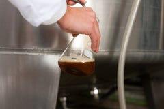 Винодел пива в его винзаводе Стоковые Фотографии RF