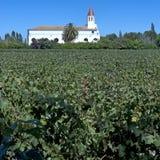 Винодельческая промышленность в долине Maipo, Чили Стоковая Фотография RF