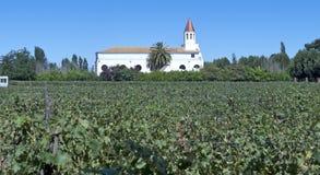 Винодельческая промышленность в Чили Стоковые Фотографии RF